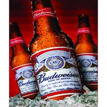 Placa Decorativa MDF - Budweiser - 22x19cm