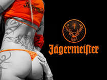 Placa Decorativa de Metal 30x40cm -Jagermeister
