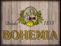 Placa Decorativa de Metal 30x40cm - Bohemia MD