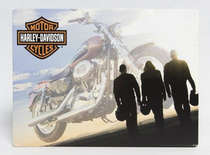 Placa Decorativa de Metal 30x40cm - Harley Davidson Blue Sky