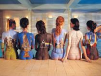 Placa Decorativa de Metal 30x40cm - Pink Floyd Albums
