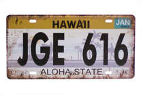 Placa Metal Vintage - Hawaii