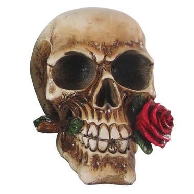 Caveira de Resina - Rosas