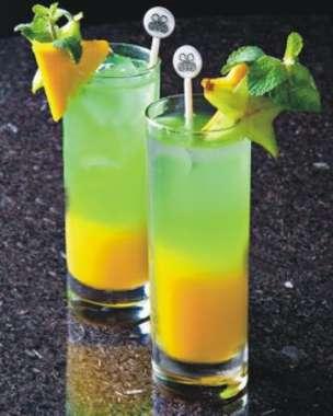 Conjunto 6 Copos Scotland Long Drink - 330 ml