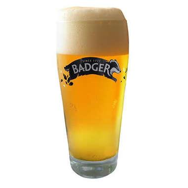 Copo para Cerveja - Badger  - Pint 568ml