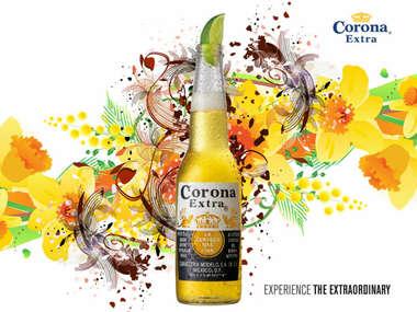 Placa Decorativa de Metal 30x40cm - Corona Summer - Lançamento